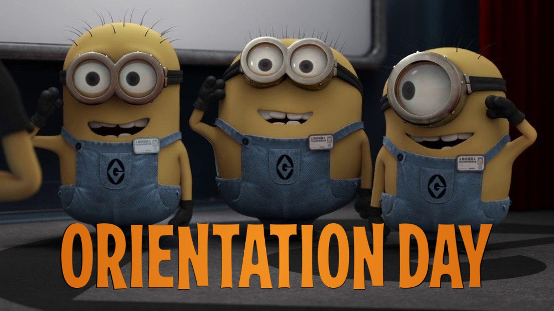 Hasil gambar untuk orientation day minions