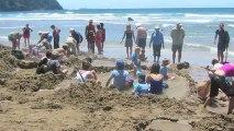 World's 5 Strangest Beaches