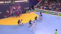 But laser du pivot Parisien Robert Gunnarsson lors de la 17e journée de D1 de handball