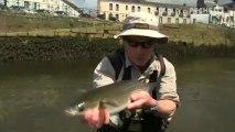 "Pêche du mulet en ""Street"" - GLOBE FISHING FINISTERE #2:5"