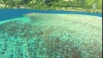 Tahiti au cœur de la Polynésie française
