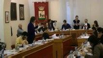 Consiglio comunale 11 marzo 2013 Punto 2 controd. variante aree da alienare intervento Arboretti