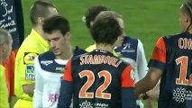Montpellier Hérault SC (MHSC) - ESTAC Troyes (ESTAC) Le résumé du match (29ème journée) - saison 2012/2013