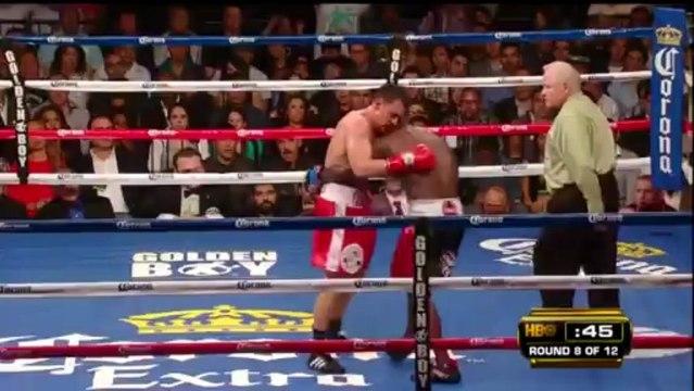 Andre Berto vs. Robert Guerrero