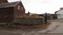 Centre équestre / cours équitation à liège, près de embourg  By Swtv