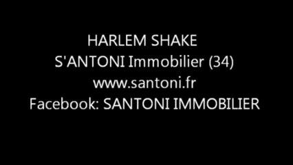 HARLEM SHAKE SANTONI 04 dv