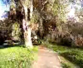 Visita al parco dell'Ardeatina in Roma