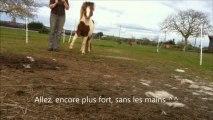 pony le 23 mars 2013, essai pivots antérieurs+ débuts pas espagnol + entrainement