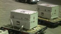 Two giant pandas are FedExed to Canada