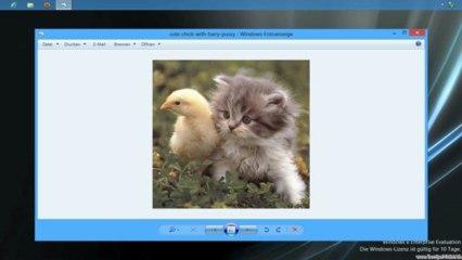 Windows 8: Bilder auf Desktop anzeigen