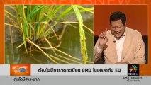 ต้องไม่มีการจดทะเบียน GMO ในเจรจากับ EU