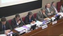 Sport pour tous, sport de haut-niveau : audition de Valérie Fourneyron à l'Assemblée Nationale