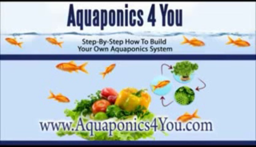 Aquaponics System DIY Design Plans Video Tutorial