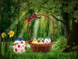 Pâques - Joyeuses Pâques les poussins