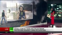 Stun grenades explode as Palestinians protest land confiscation by Israel