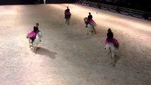 Les écuries du Trèfle. Salon du cheval de marche-en-famenne 2013 pour le Sabot d'Or