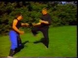 Ninjutsu - Robert Bussey - Mastering Ninja Combat Tactics Vol. 3 - Hand to Hand Combat and More