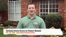 Flower Mound Green Grass Lawn Diseases - Lawn Jockey