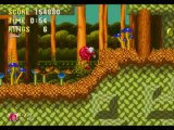Sonic The Hedgehog 3 & Knuckles (Knuckles Mode) 9/14