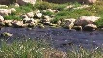 El medi ambient - La salinització dels rius
