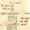 Learn English  if will   If would Practice using if will and if would together Intermediate Exercise