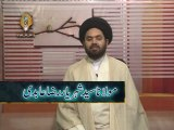 Lecture 5  Mixing of Lawful & Unlawful Property  by Maulana Syed Shahryar Raza Abidi