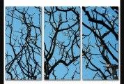 2modern  Skyward Acrylic Panel  2modern  Skyward Acrylic Panel40x60floatingsingle Panel