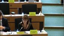 """Débat sur le rapport : """"Stratégies régionales pour les zones industrielles dans l'Union européenne"""""""