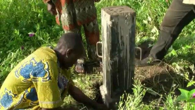 Reforestation au Bénin : la protection de la forêt sacrée Wimman à Ouéssè