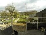 Time Laps avec la GoPro 3 black