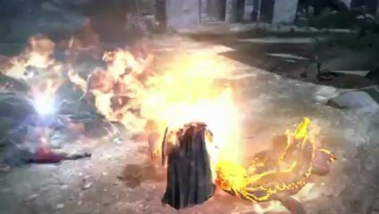 Enemy Showcase de Dragon's Dogma