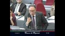 Roma - Audizioni - Conferenza delle Regioni e delle Province autonome (11.04.13)