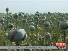 আফগানিস্তানে বেশী লাভ�