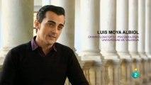 Psicobiologia de la agresion y la violencia: Luis Moya