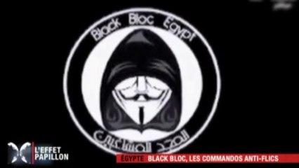 Les Black Block | L'Effet Papillon 13.04.2013
