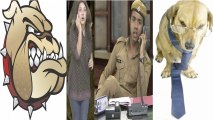 Mad Dogs Vs Good Dogs - Episode 326 - Comedy Show Jay Hind!