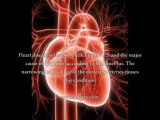 Cleaning Artery Walls - Clean Arterial Walls To Prevent Heart Attacks & Stroke?
