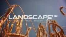 Landscape Channel - This is what we do at LandscapeHD1080p