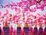 Entertaining and Thrilling Shen Yun Performing Arts in Austin