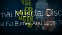 Is Primal Muscle Legit - TIPS FOR CREATING Is Primal Muscle Legit AN EFFECTIVE MUSCLE