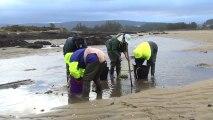 Pêche durable en Basse-Normandie : les pratiques durables