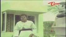 Raja Babu Hilarious Dialogues - Comedy Scene