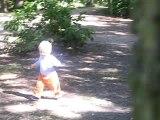 Cache-cache dans les bois