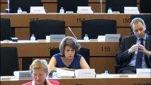 Corinne Lepage en commission ENVI sur les dispositifs médicaux