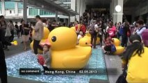Giant 'rubber duck' floats into Hong Kong - no comment