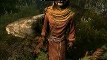 The Elder Scrolls 5 : Skyrim - Mod - Flora Overhaul, Climates of Tamriel, Enhanced Blood Textures, Improved NPC Clothing