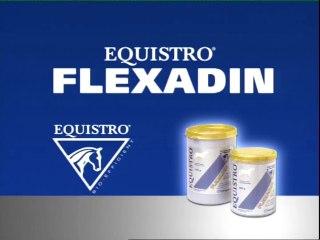 Equistro Flexadin