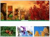 Free Joomla Image Slider Software Hi Slider – Hislider.com Tutorial
