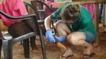 Stages médecine au Ghana : campagnes de santé publique avec Projects Abroad