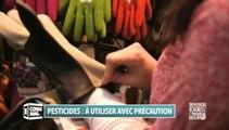 Jardiner autrement : les pesticides, à utiliser avec précaution !